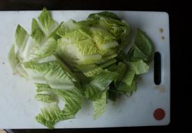chopped-lettuce