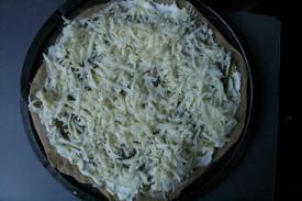 pizza-mozarella-275