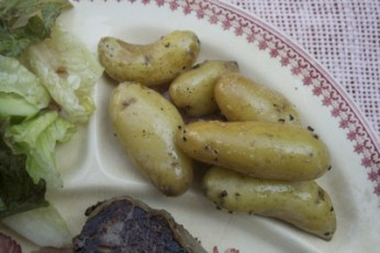 Upstate New York Fingerling Salt Potatoes