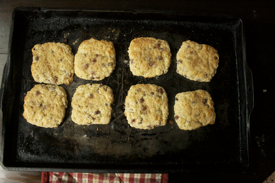 baked-scones-cookie-sheet