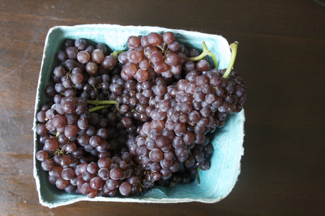 quart-grapes-475