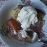Grandma's San Joaquin Valley Peach Cobbler Recipe