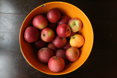 bowl-red-apples