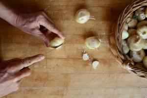 Trim_onions_II